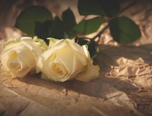 Valentinstags-Menu 14.2.20